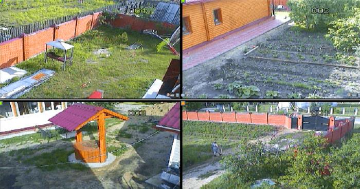 Камера показала, что вытворяет соседка в нашем огороде в наше отсутствие
